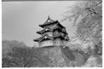 hirosaki_0904_10.JPG